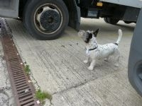 Bengie on Patol - checking Truck
